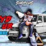 Download Mp3: Surplus - Hide ur pant