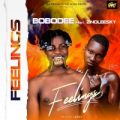 {Music} Bobodee Ft. Zinoleesky – Feelings
