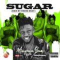 {MUSIC} Mayowa Bae – Sugar
