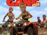 Enamel – Gang