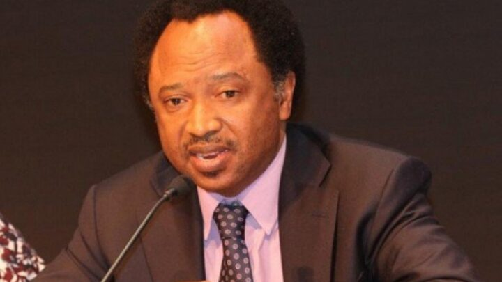 Petrol Worth: ASUU Ought to Symbolize Nigerians At Negotiation Desk – Shehu Sani