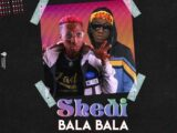 {Music} Tobyshang x Sunkkeysnoop – Shedi Bala Bala