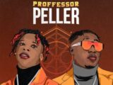 {Music} Seyi Vibez ft. Zlatan – Professor Peller